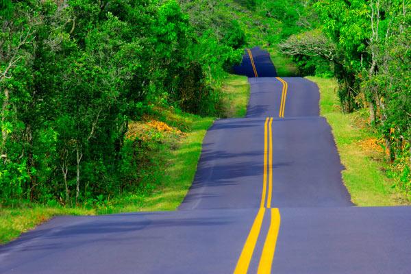 По такай дороге, где спуск постоянно меняется на подъем, лучше ехать с включенным круиз-контролем, иначе постоянно придется то нажимать, то бросать педаль газа