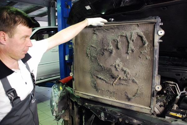 Одна из самых элементарных причин перегрева двигателя - радиатор забит пылью и мусором. О нормальной работе системы охлаждения двигателя, в таком случае, говорить не приходится